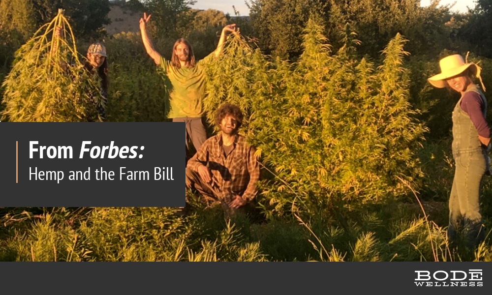 Hemp-and-the-Farm-Bill